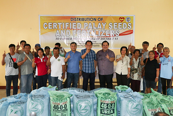 certified palay seed_1
