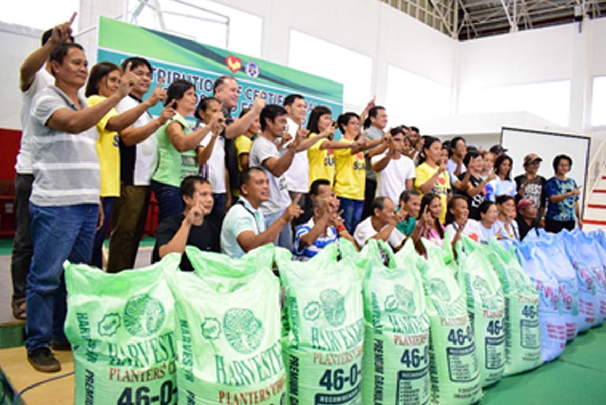 distribution of certified palay seeds_2