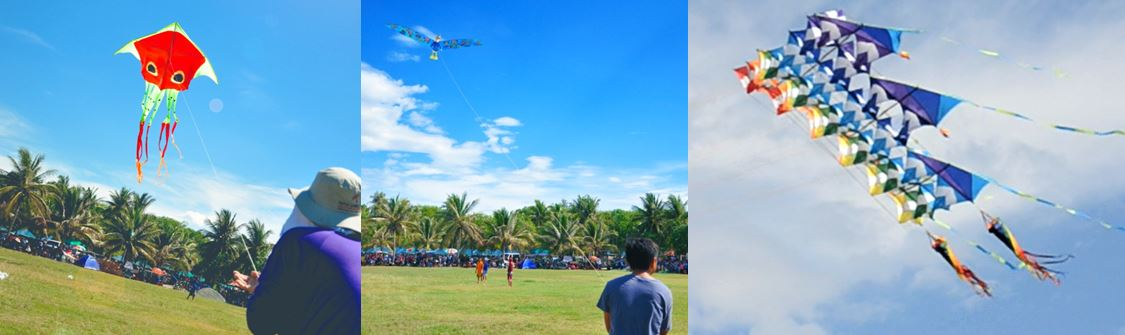kite flying competition at pistay dayat celebration